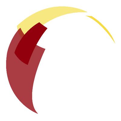 USC IIGH logo.png