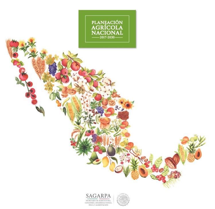 Source   : Gobierno de México