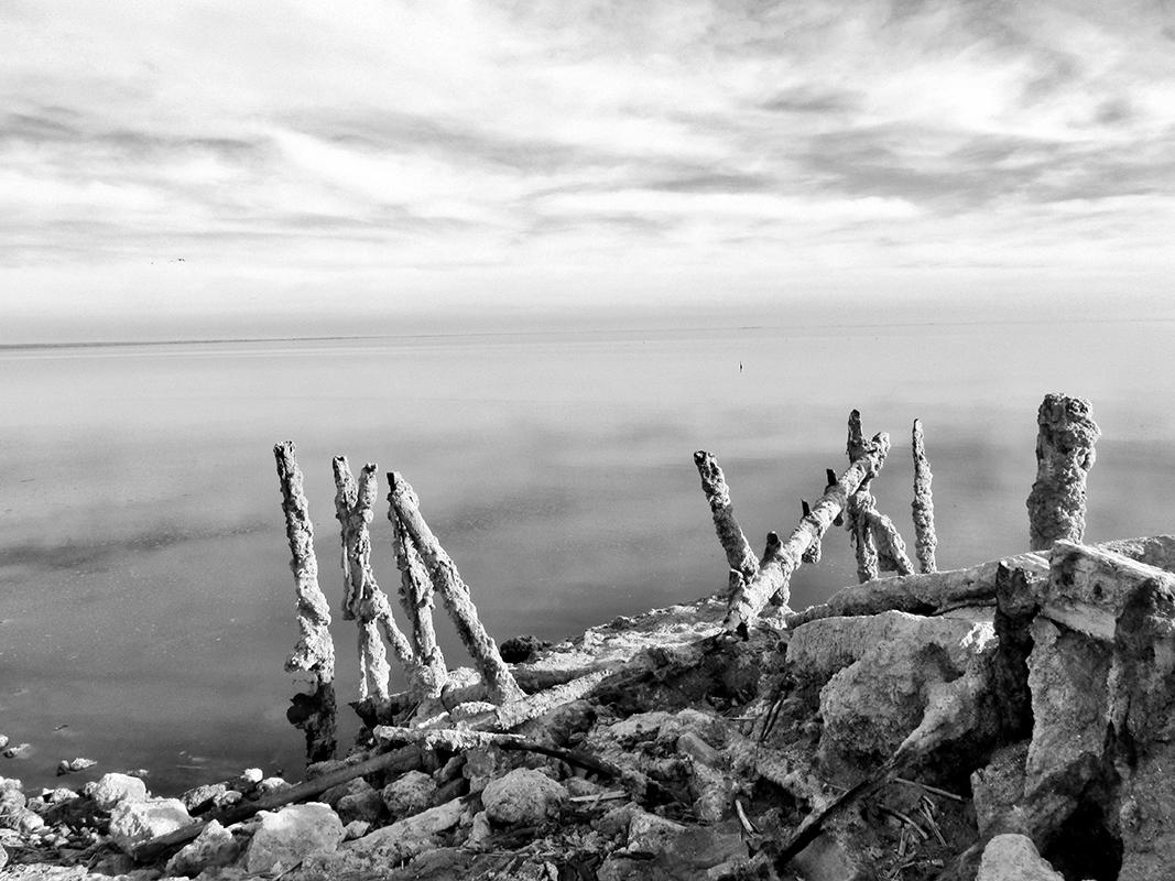 Salton Sea I - # 1/25