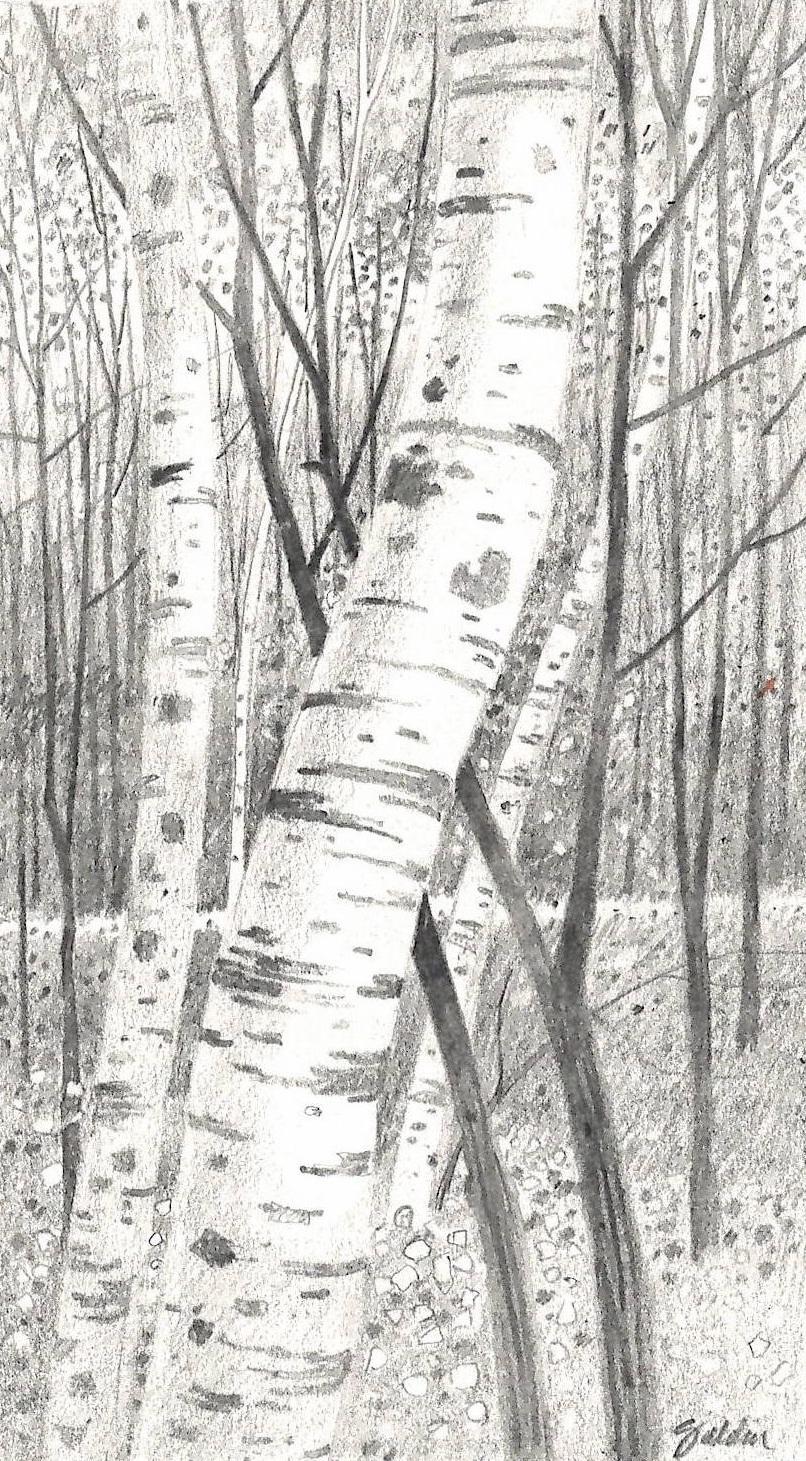 Birch Lean