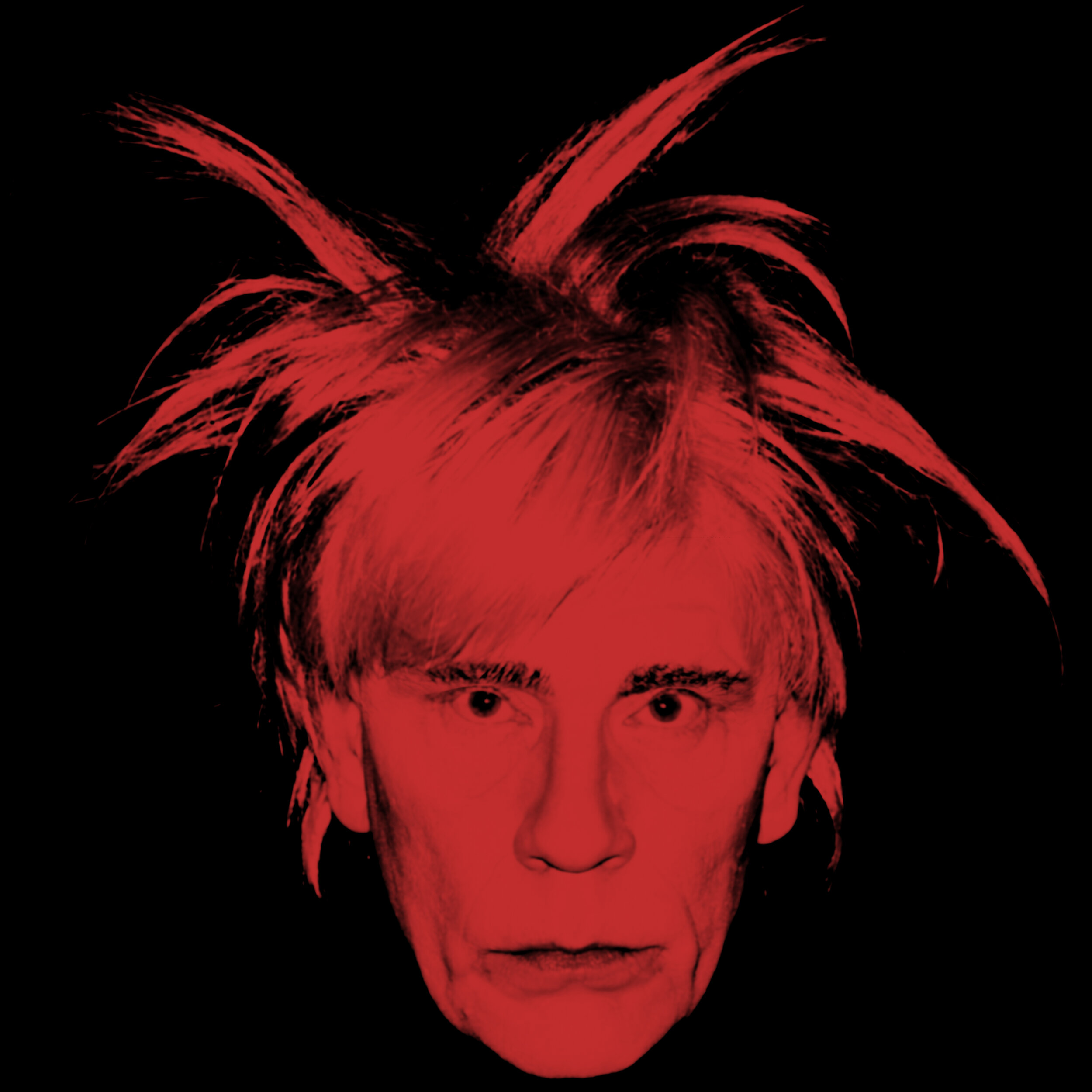 Andy Warhol _ Self Portrait (Fright Wig) (1986), 2014.jpg
