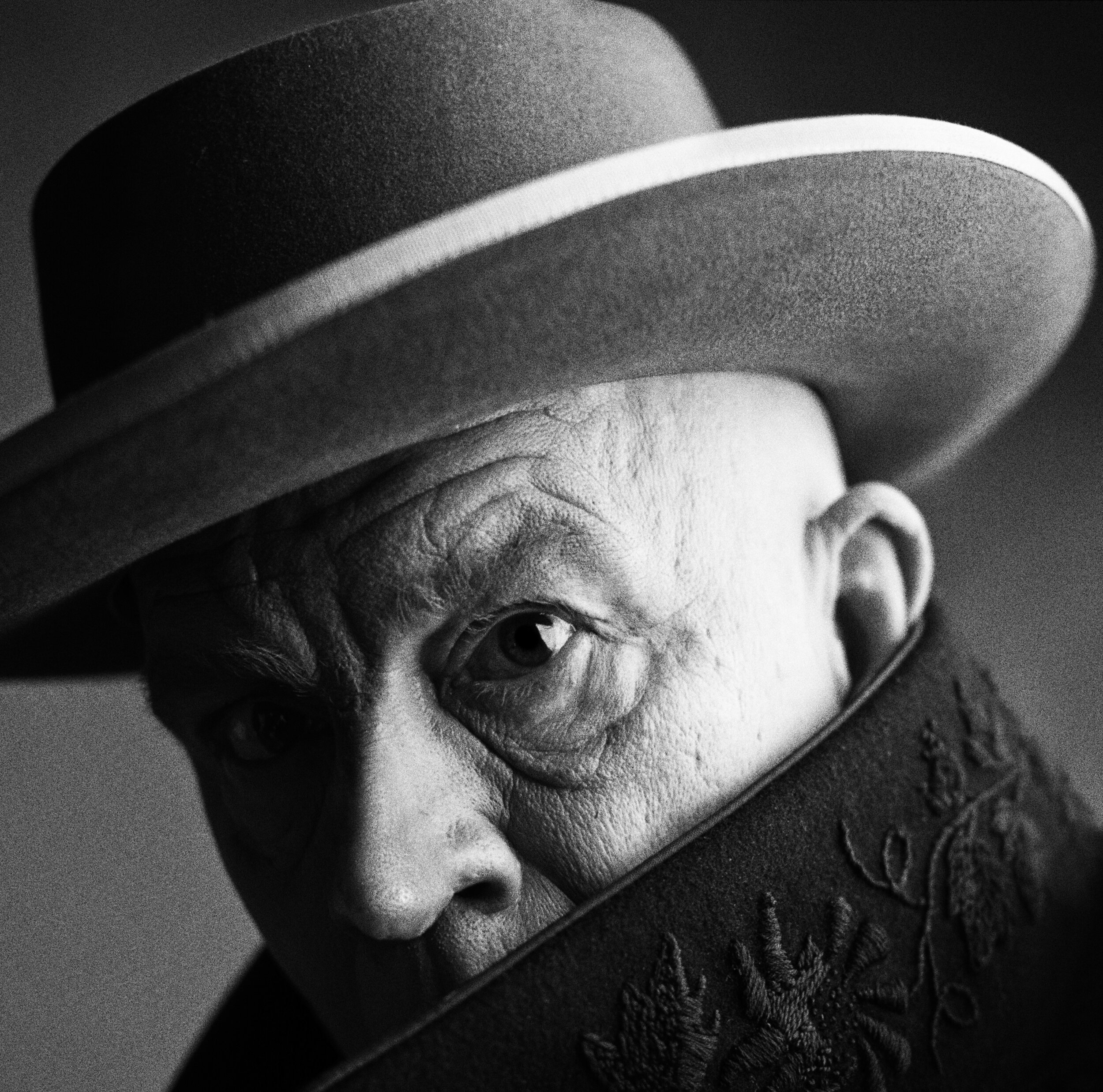 Irving Penn _ Pablo Picasso, Cannes, France (1957), 2014.jpg