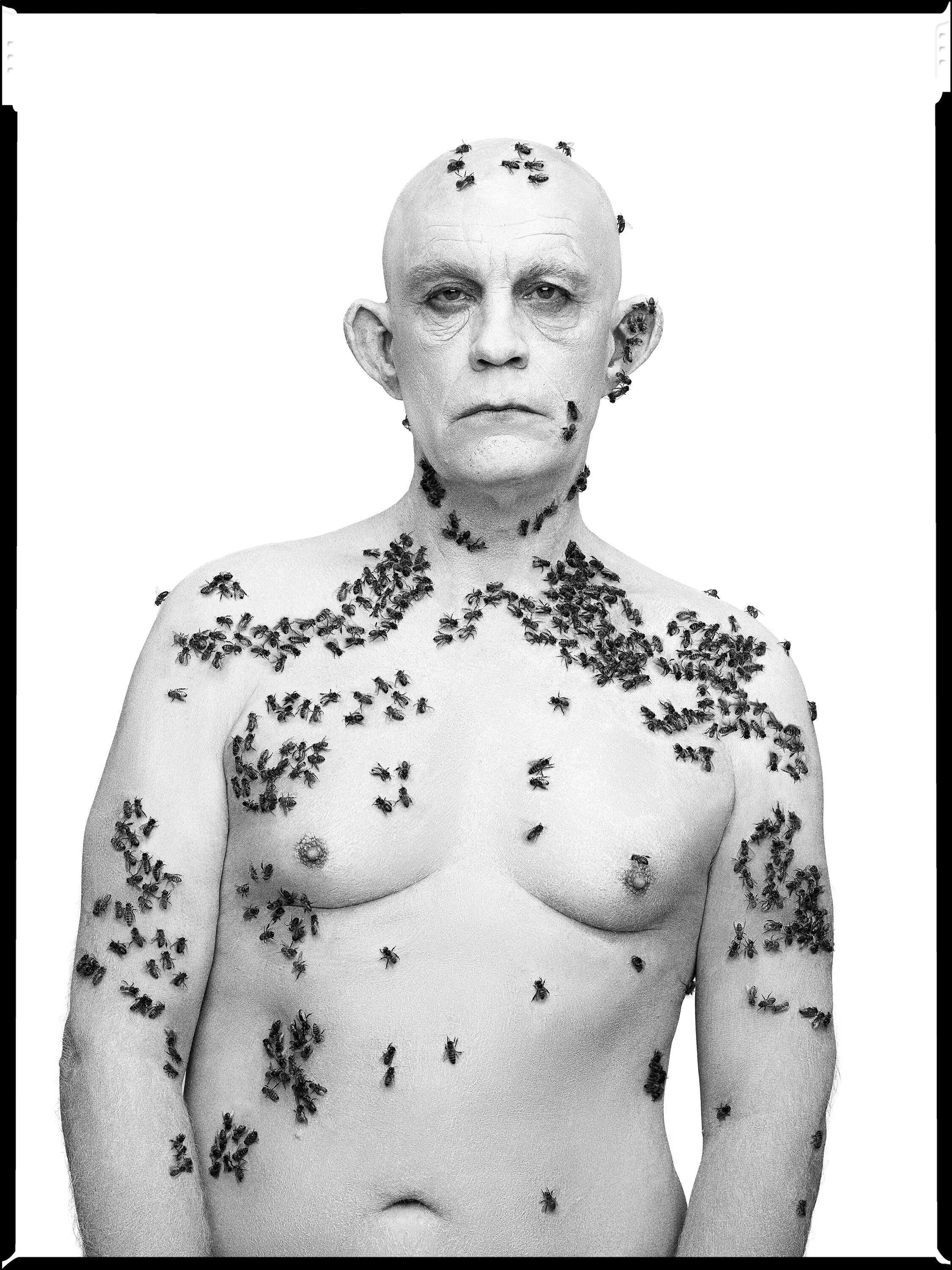 Richard Avedon _ Ronald Fisher, Beekeeper, Davis, California, May 9 (1981), 2014.jpg