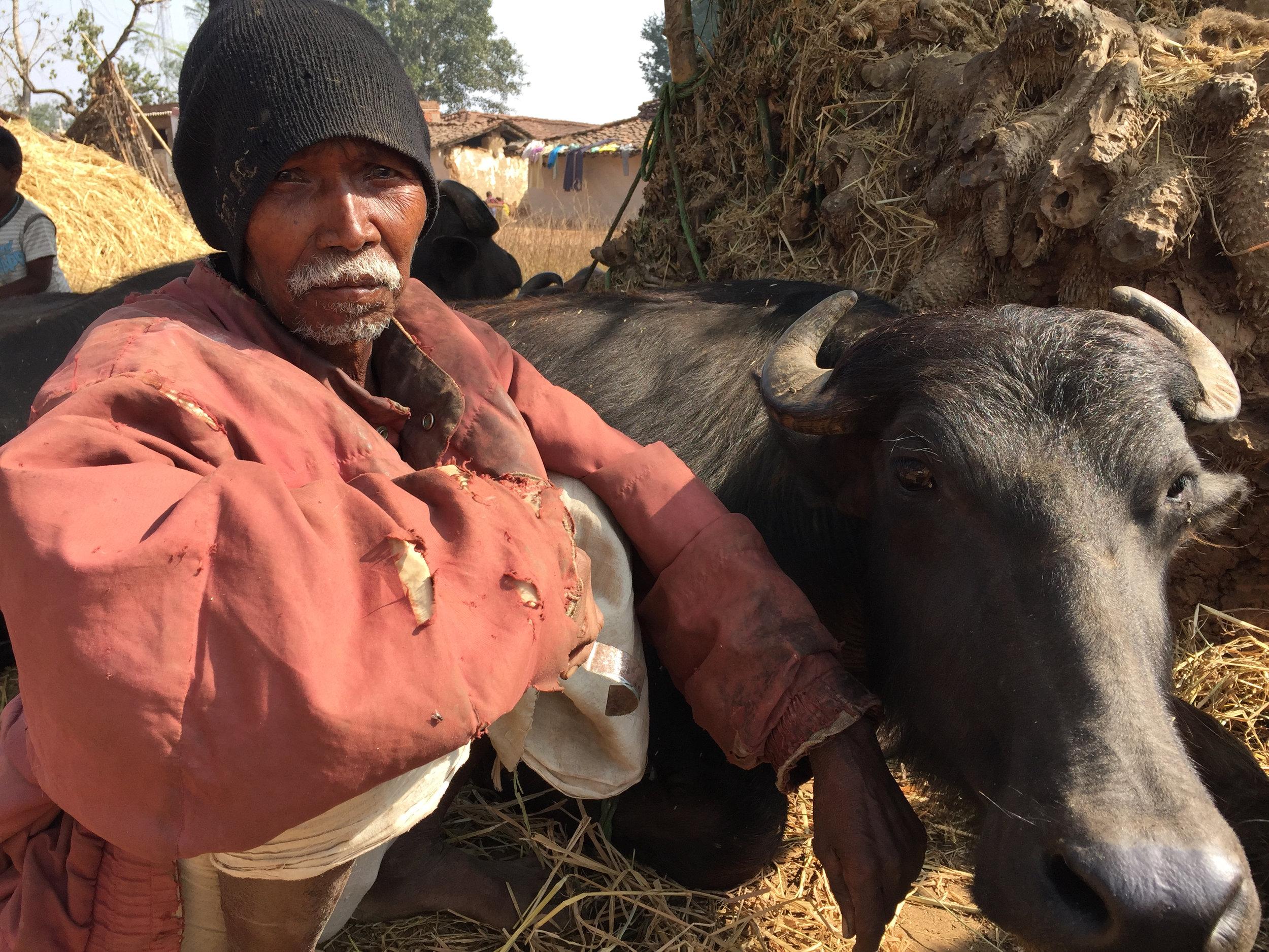 C12 Adivasi man with his buffalo.jpg