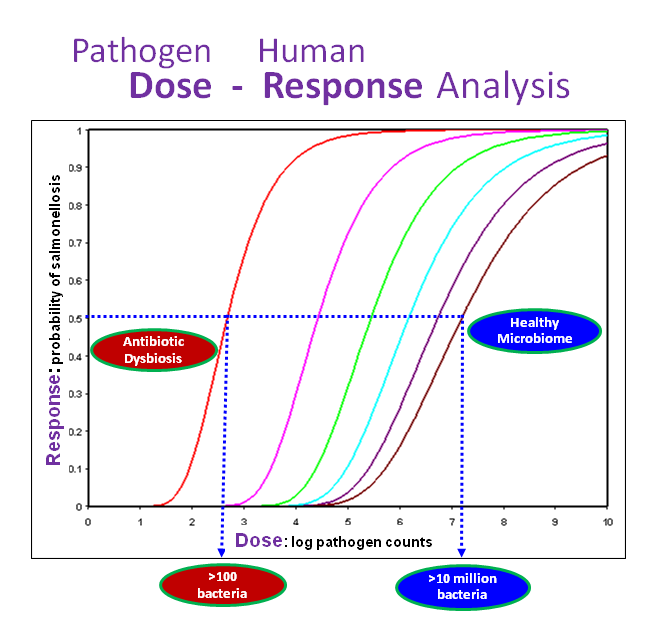 Pathogen dose influences human response. Half of human volunteers with healthy microbiota (blue oval) did not get salmonellosis until ingesting ten million pathogens, while humans with antibiotic disruption (red oval) are likely to get ill ingesting only 100 pathogens. From Coleman et al., 2017b.