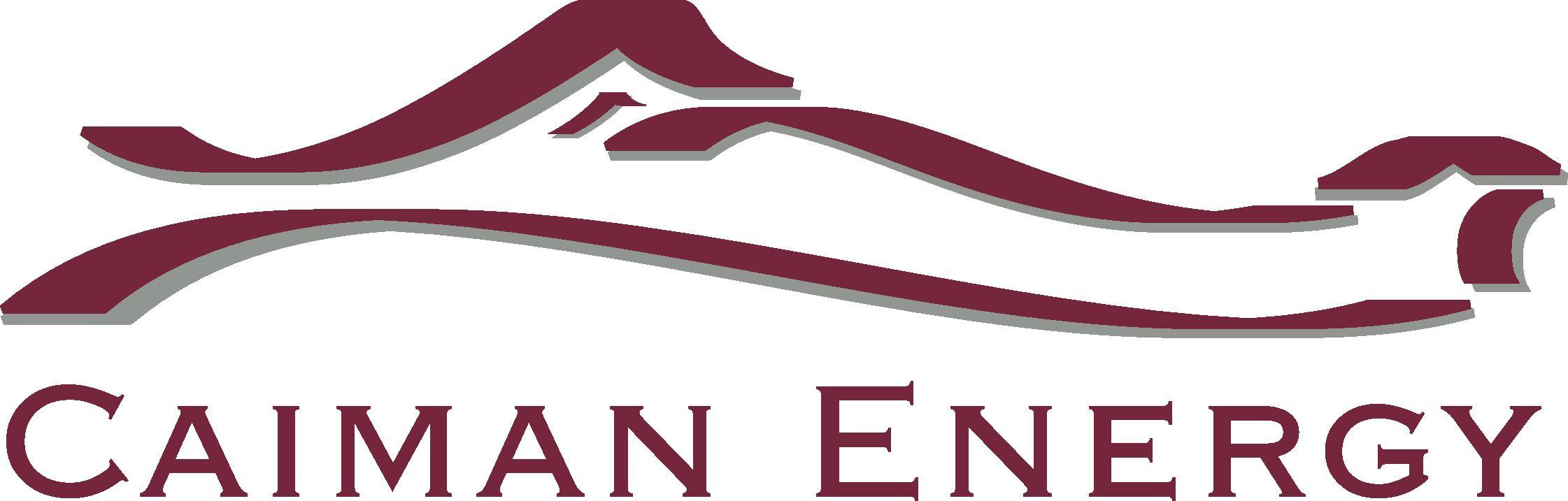 Caiman logo-Full color-curves.jpg