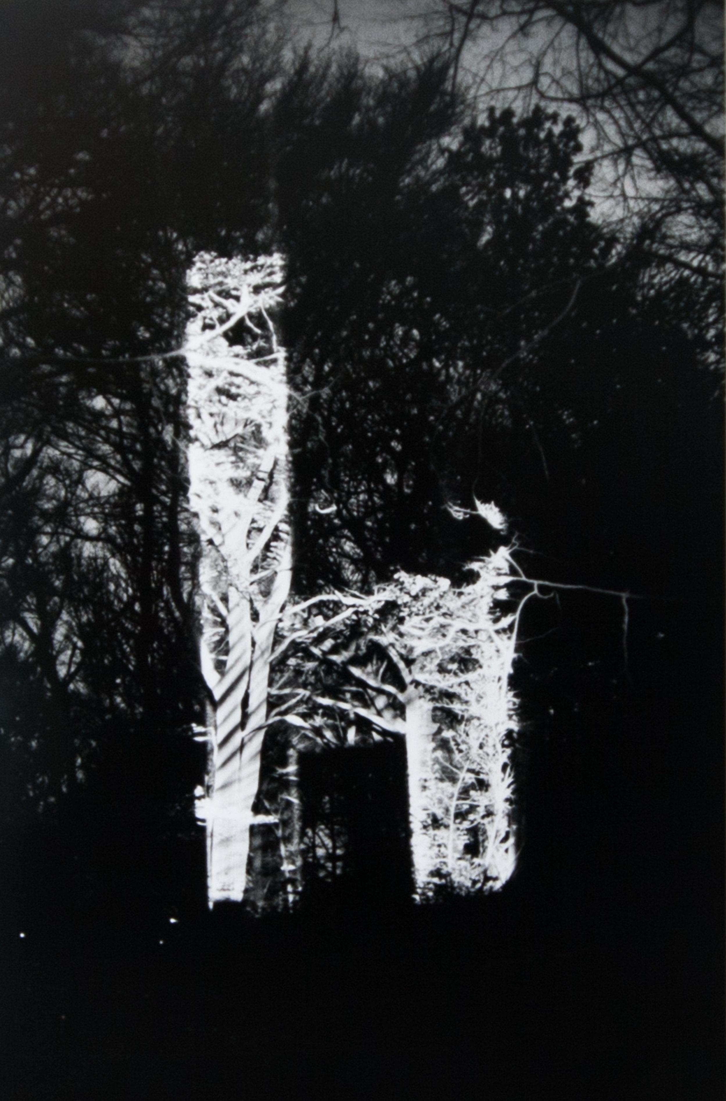 Jetelova_Galerie_Zavodny4.jpg