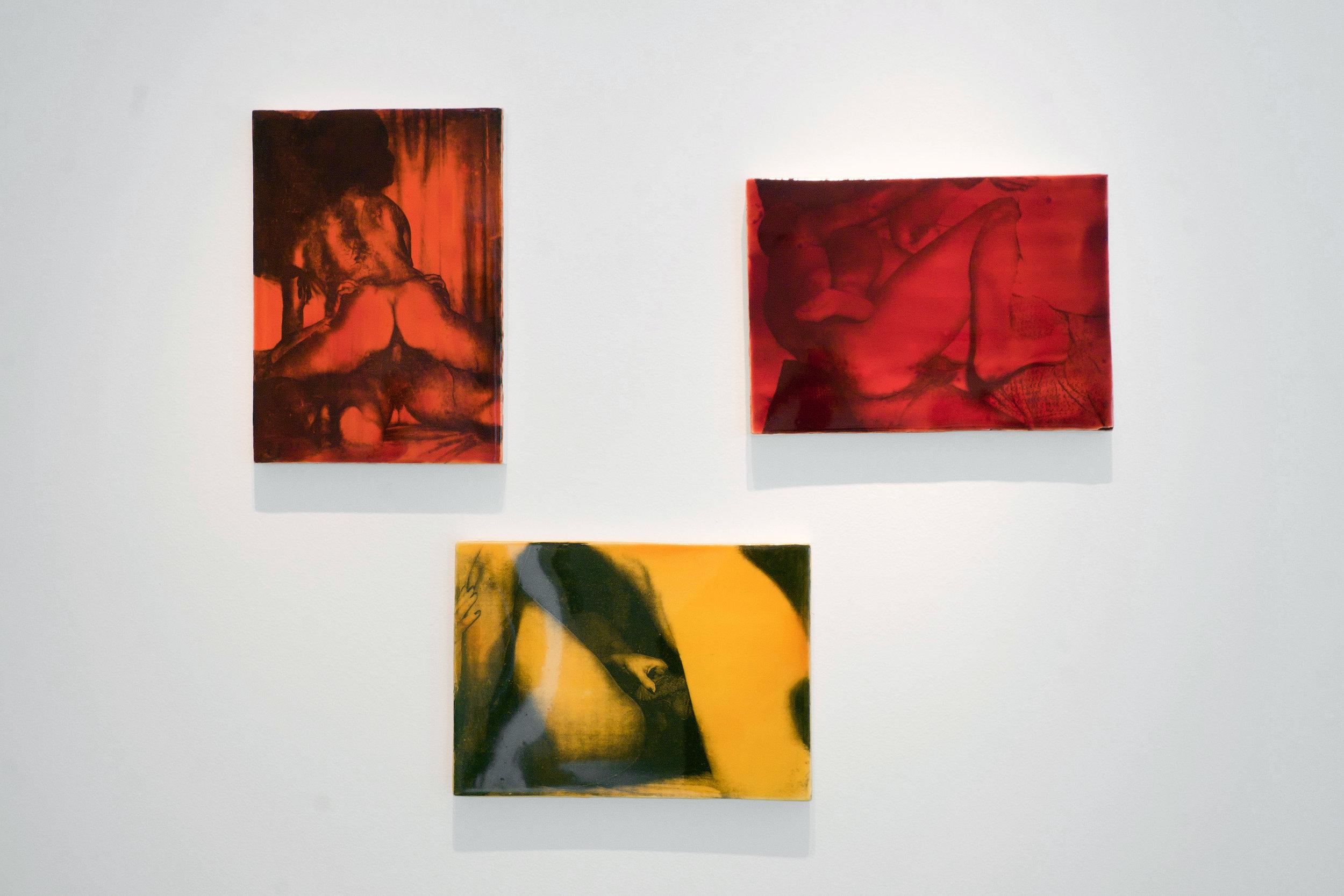Schlegel_Galerie_Zavodny1.jpg