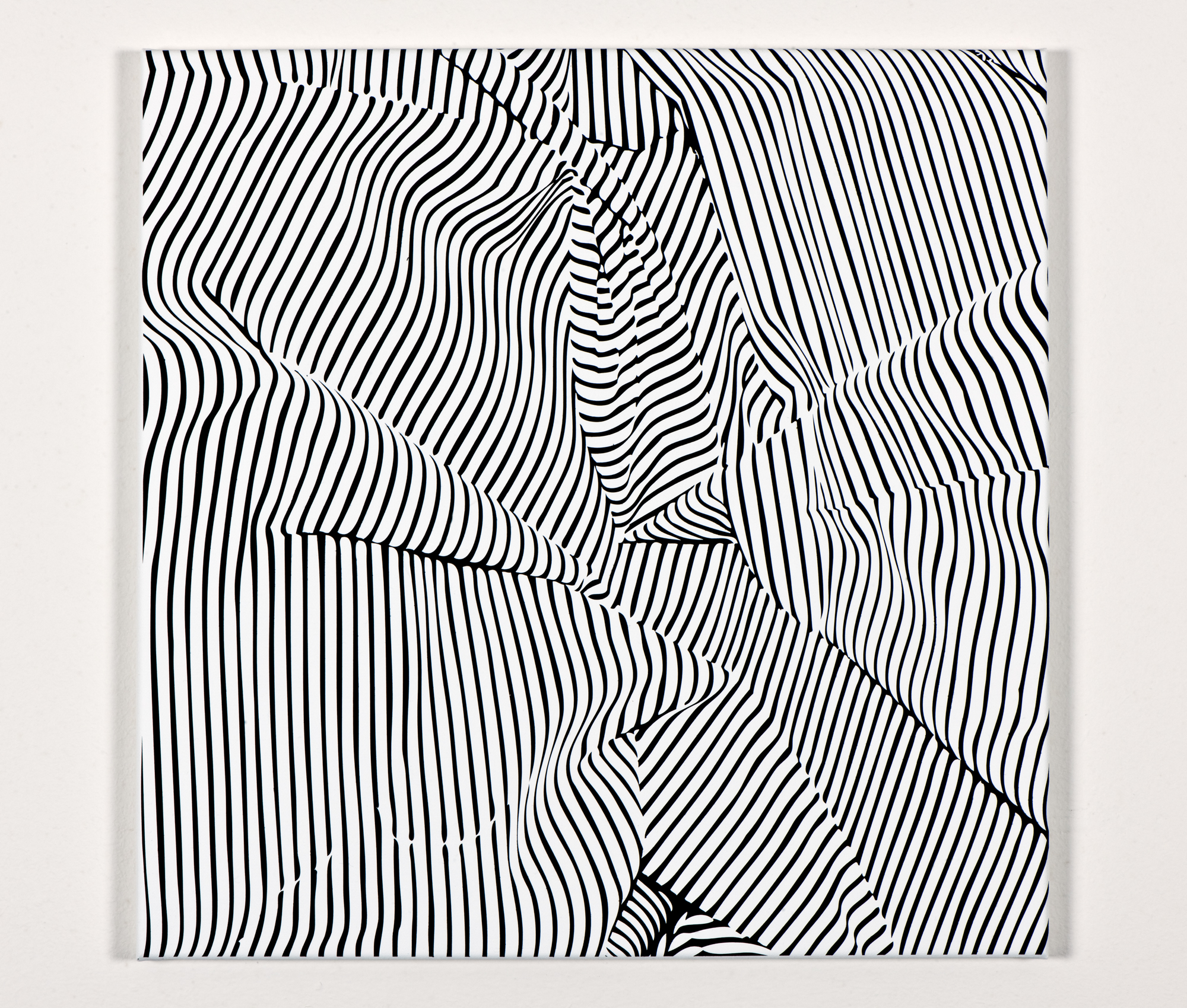 Hayek_Galerie_Zavodny2.jpg
