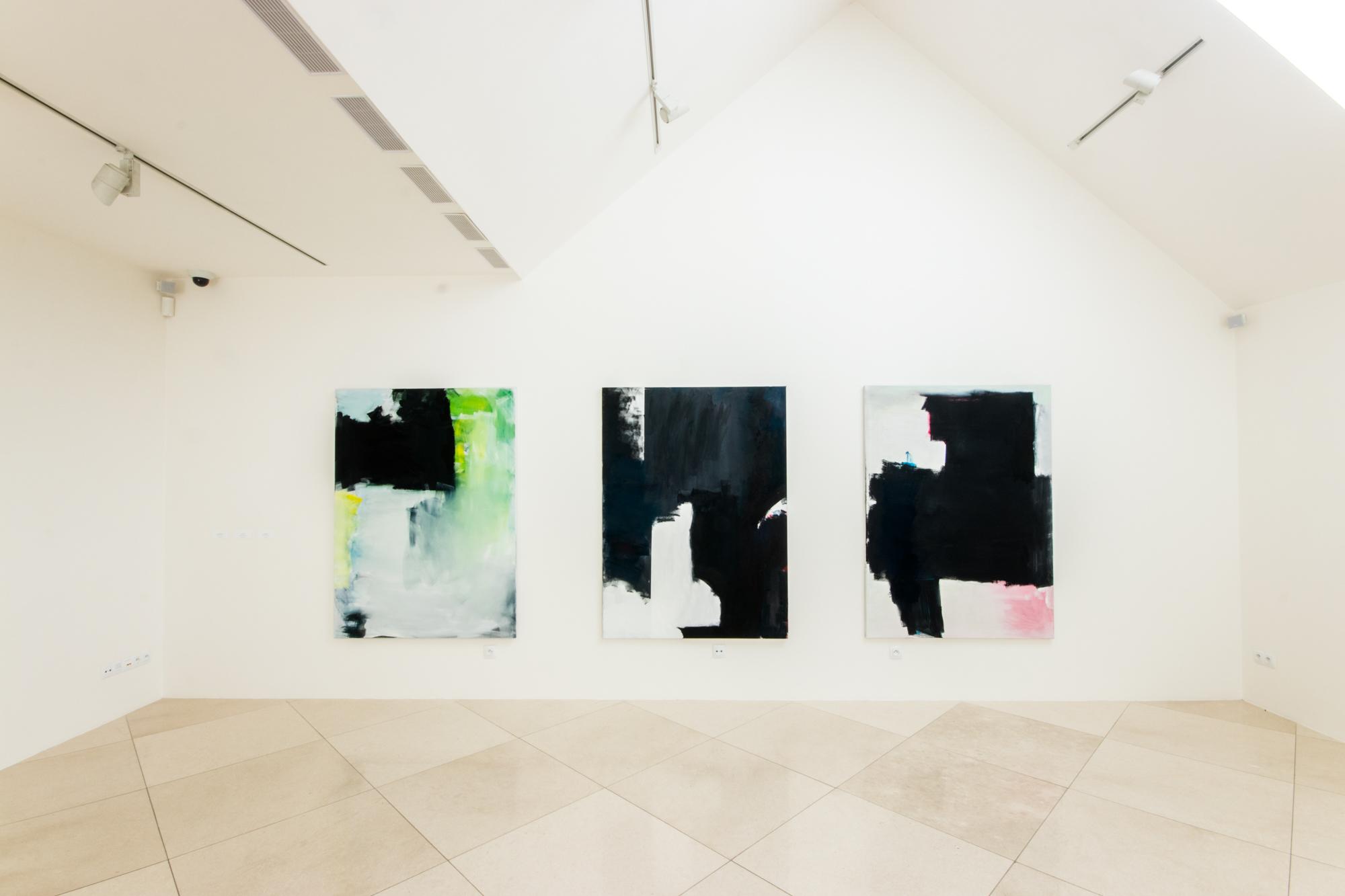 Janssen_Galerie_Závodný.jpg