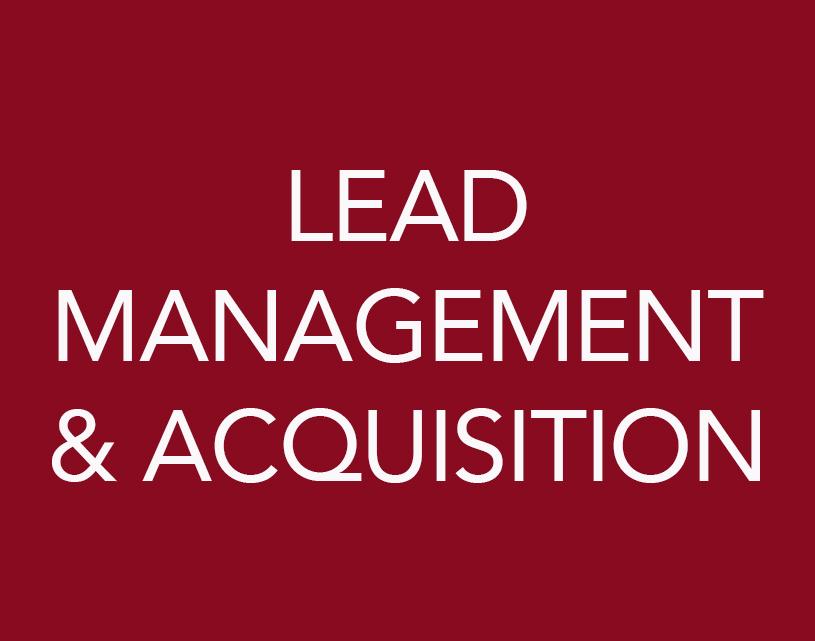 LEAD MANAGEMENT & ACQUISITION