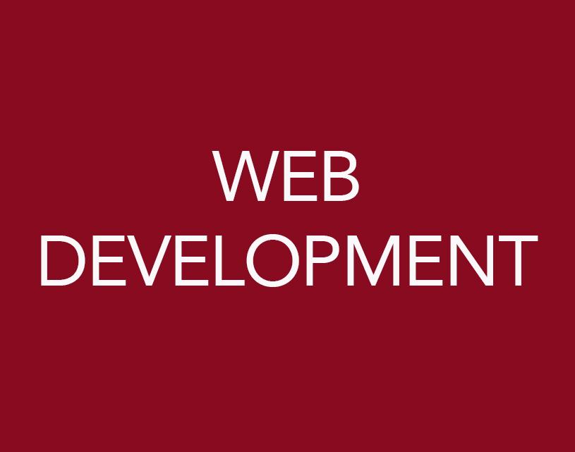 SHAE STERRETT WEB DEVELOPMENT SERVICES.jpg