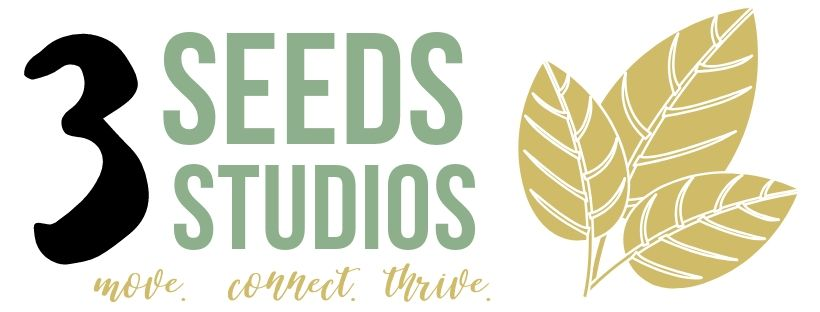 3 Seeds Studios Logo Wide.jpg