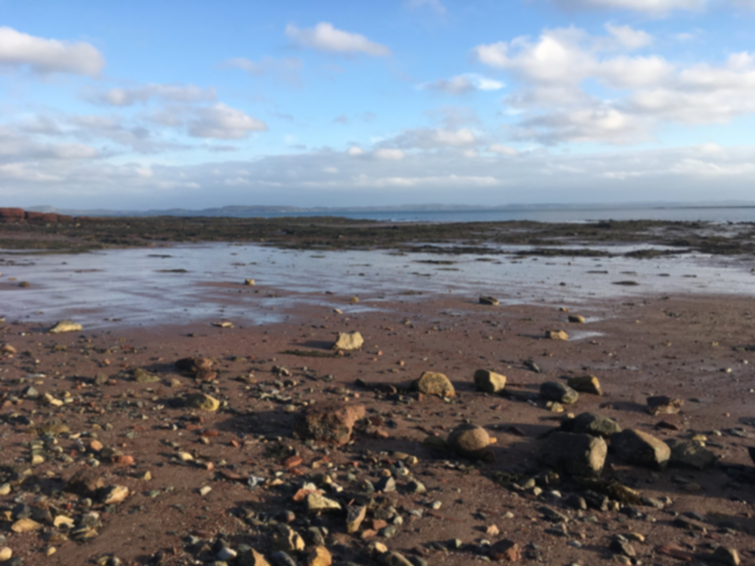 Reimagining the Blue Economy - Five Women's Perspectives on the Bay of Fundy