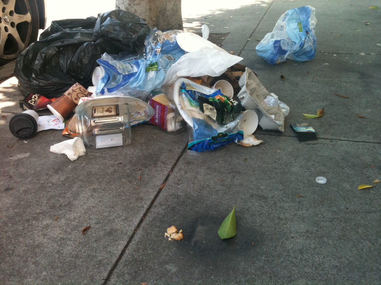 Mission Dolores Sidewalk Trash.jpg