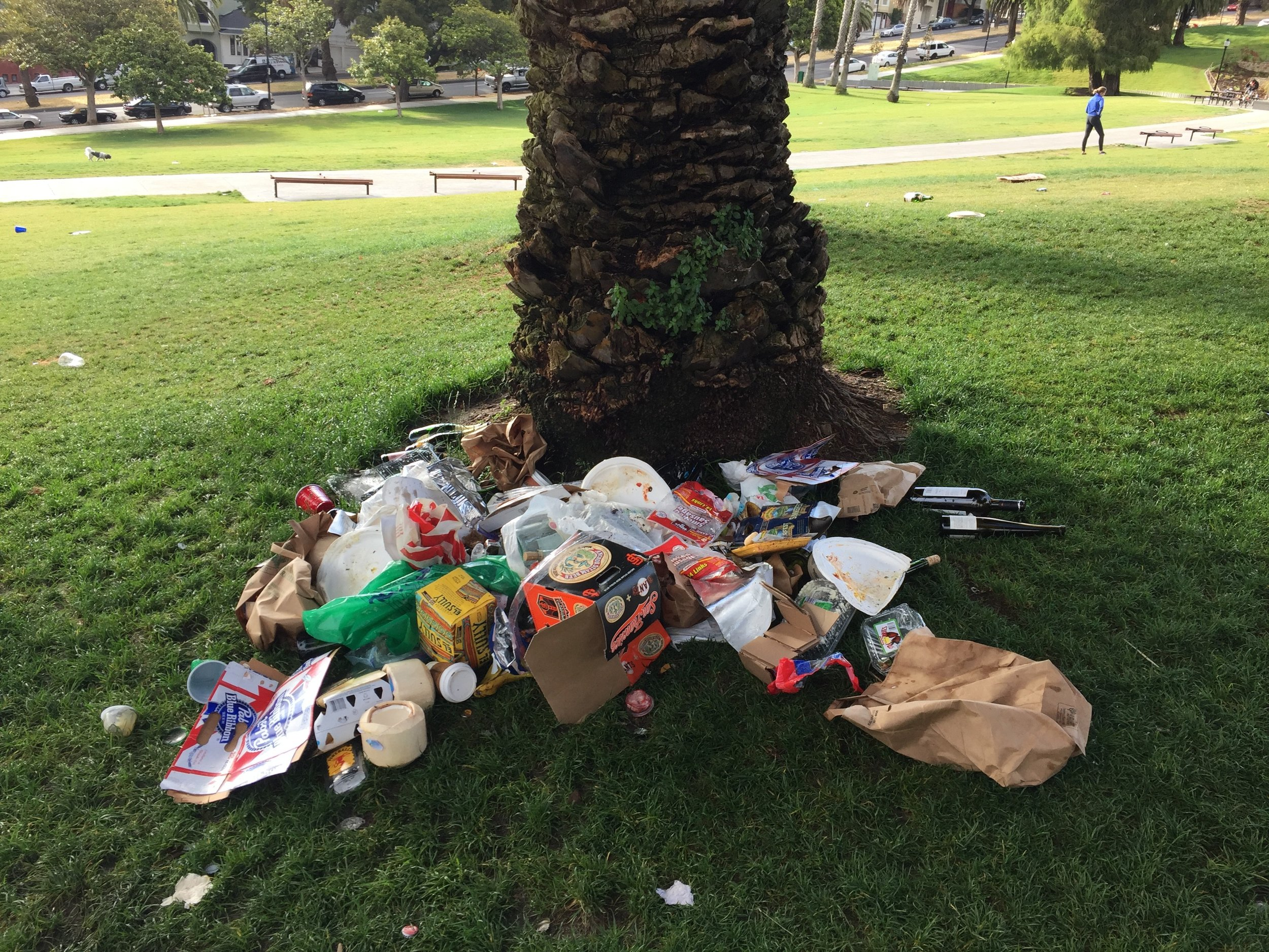 Dolores 7 - trash in tree well.jpg