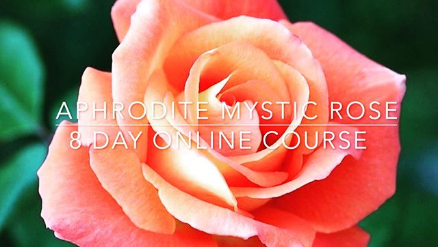 """NOW AVAILABLE from Maya Vassallo 8 Day Online Course Aphrodite Mystic Rose © For a short time we are offering this Course at a Special INTRO Promo Price of JUST 55 Euros REGISTER HERE: https://www.aphroditemysterypath.com/8day-mystic-rose-online This 8 day Mystic Rose Course is a wonderful starting point for anyone wising to walk the sacred mystery path of Aphrodite. Its a nourishing and pleasurable 8 Day journey into working with Aphrodite as Muse and Guide. Online Course INCLUDES: * 8 Mystical Rose Rituals, one for each day * 8 Guided Audio Meditations By Maya Vassallo * Intro and Closing Video Messages from Maya * 1 discounted skype session with Maya * Breath of Fire Video Instructions * Invitation to share and participate in our FB group """"Aphrodite Mystic Rose Group"""" * 10% Discount towards our other Courses"""