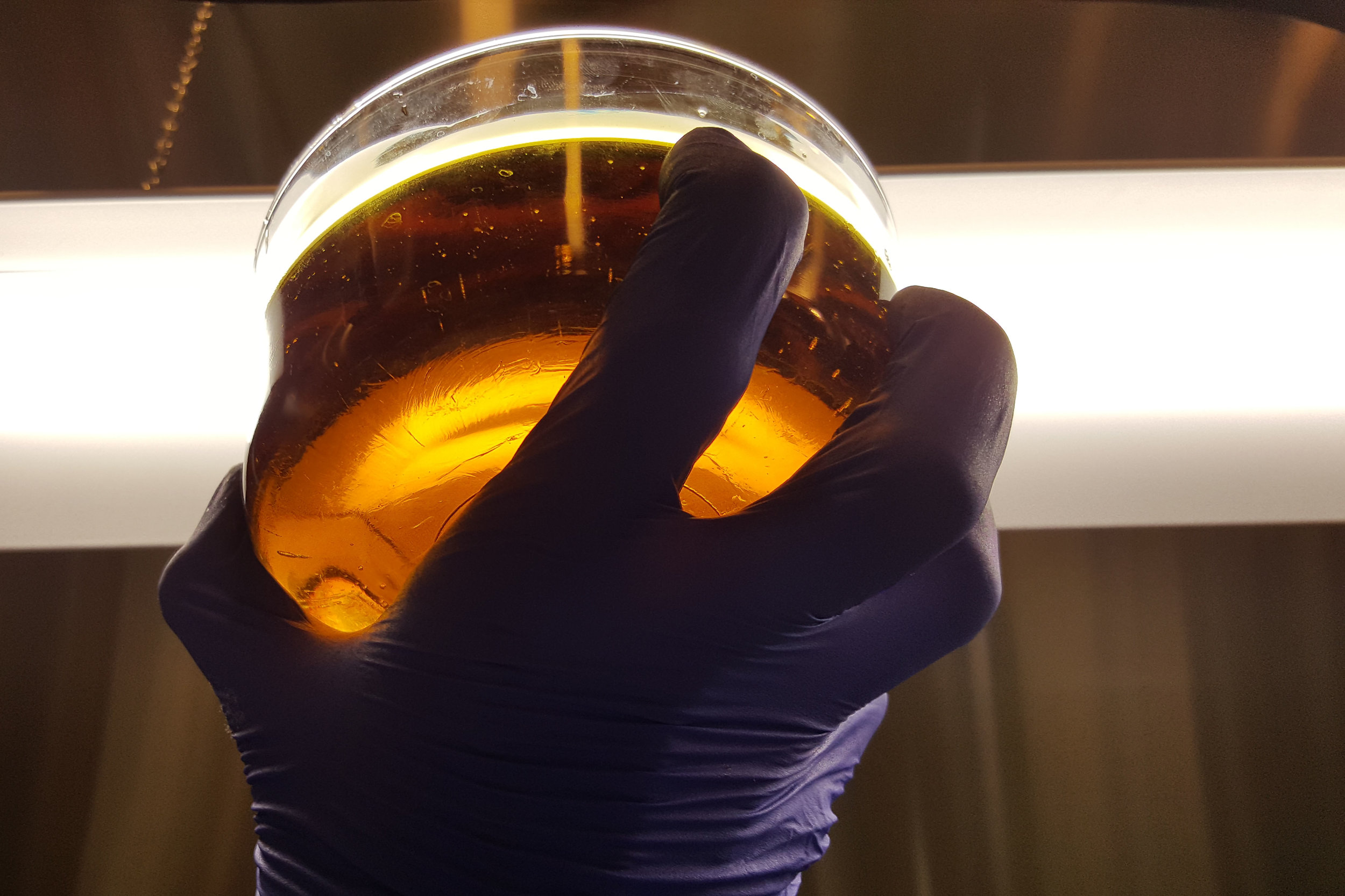 SHORT PATH DISTILLATION    'Decarboxylated' oil undergoes this process to create purified distillate