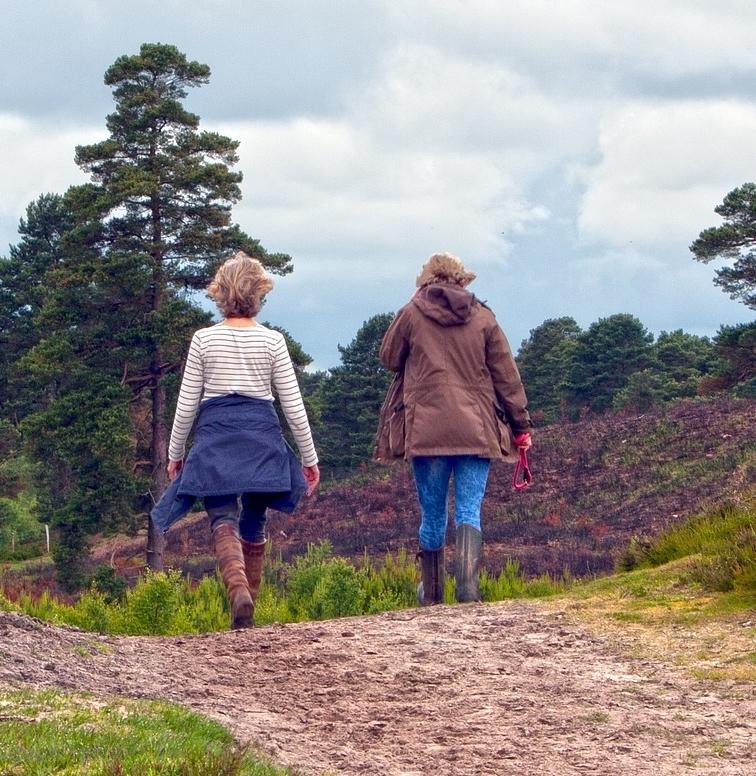 Women walk and talk therapy malvern pa