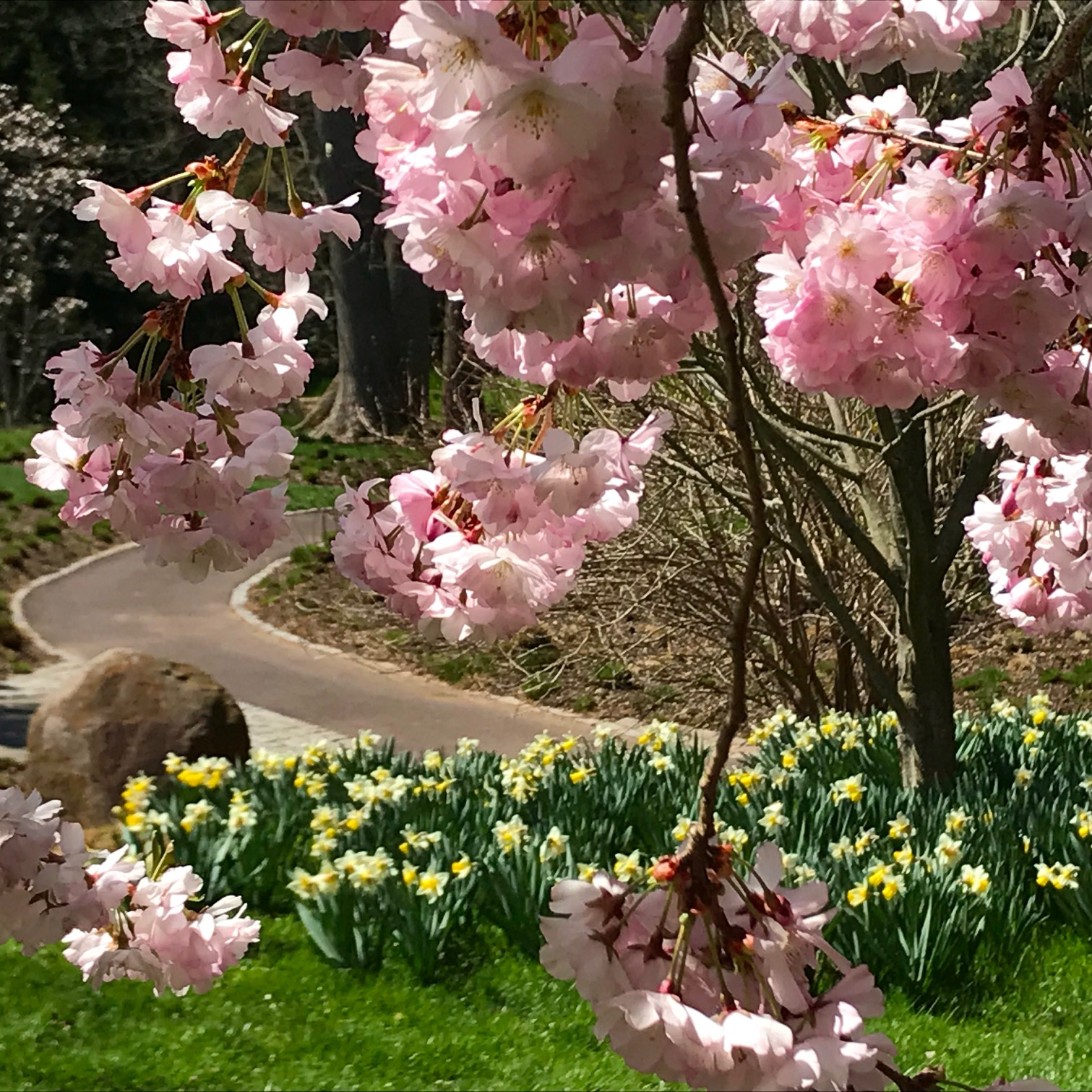 garden walk and talk therapy women malvern pa