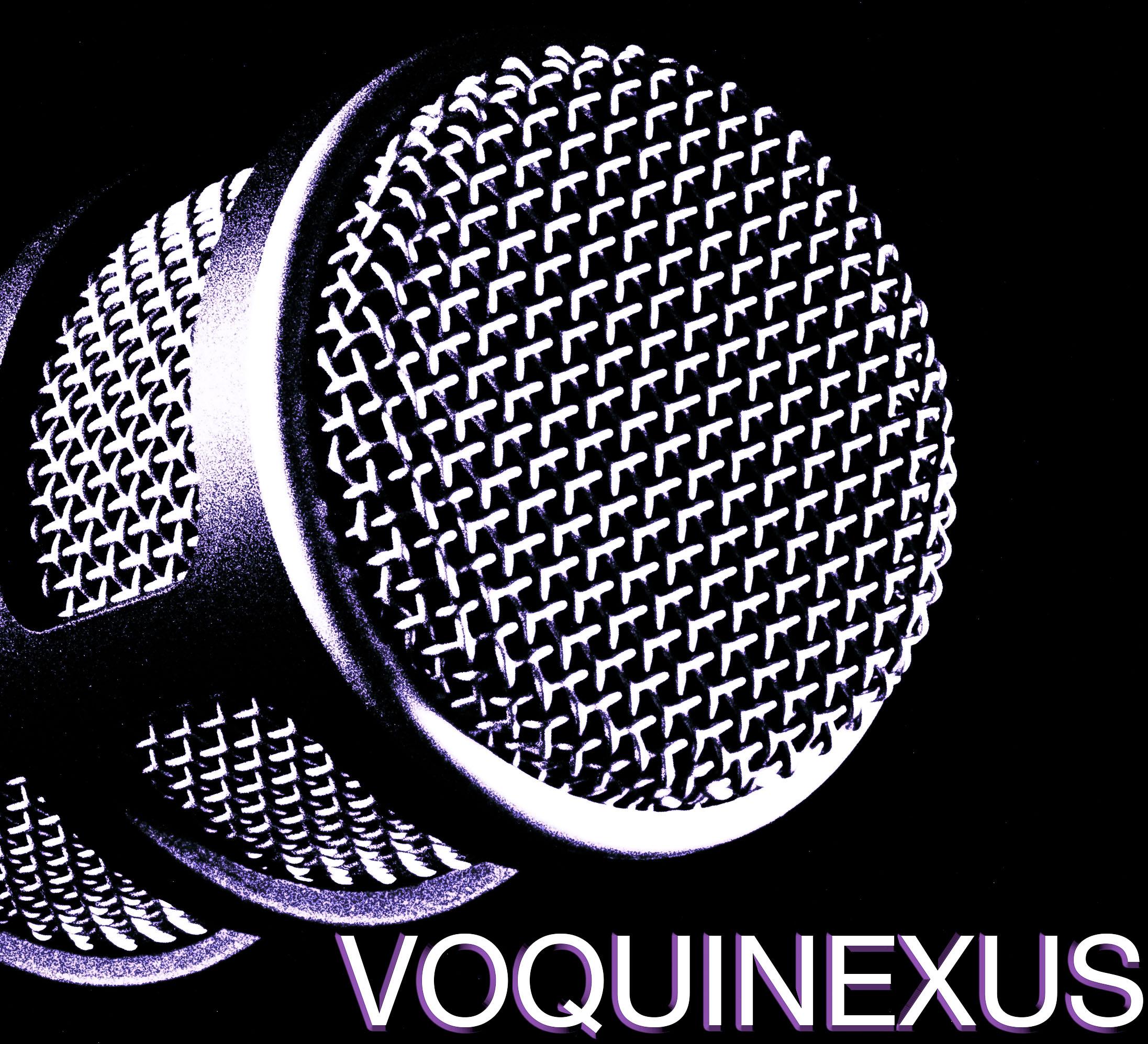 VQX logo nr monochrome (1 of 1).jpg