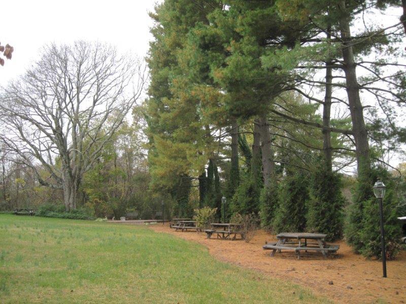 Diamond Hill grounds 6.jpg
