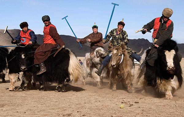 Courtesy of the Mongolian Association of Sarlagan Polo