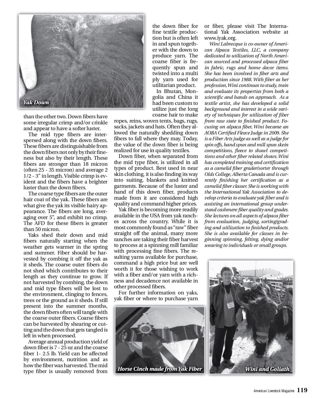 Yak Article 2012 copy.png