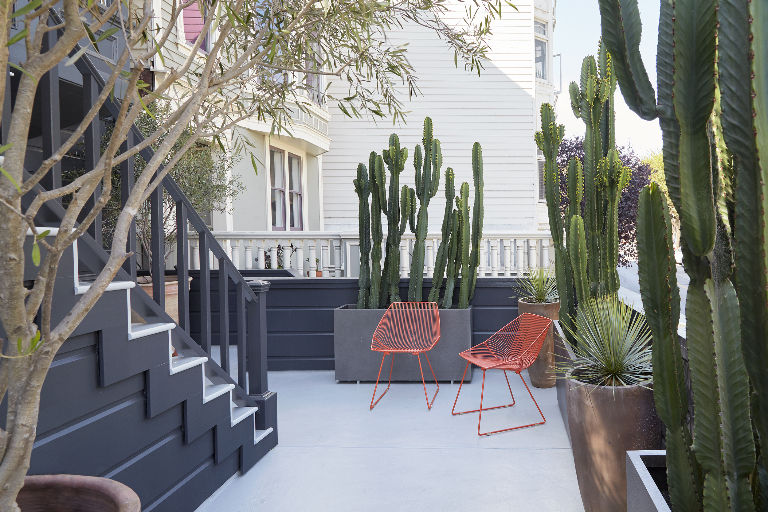 Daniel Nolan Design — Dolores Heights