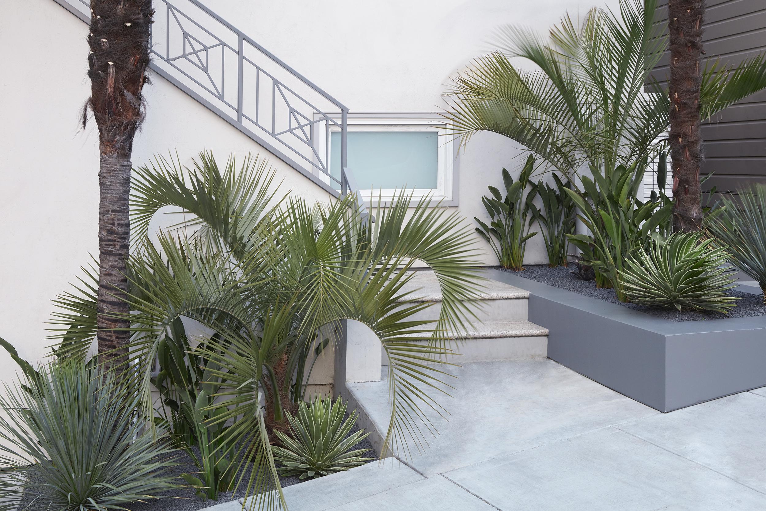 Daniel Nolan Design —Corona Heights