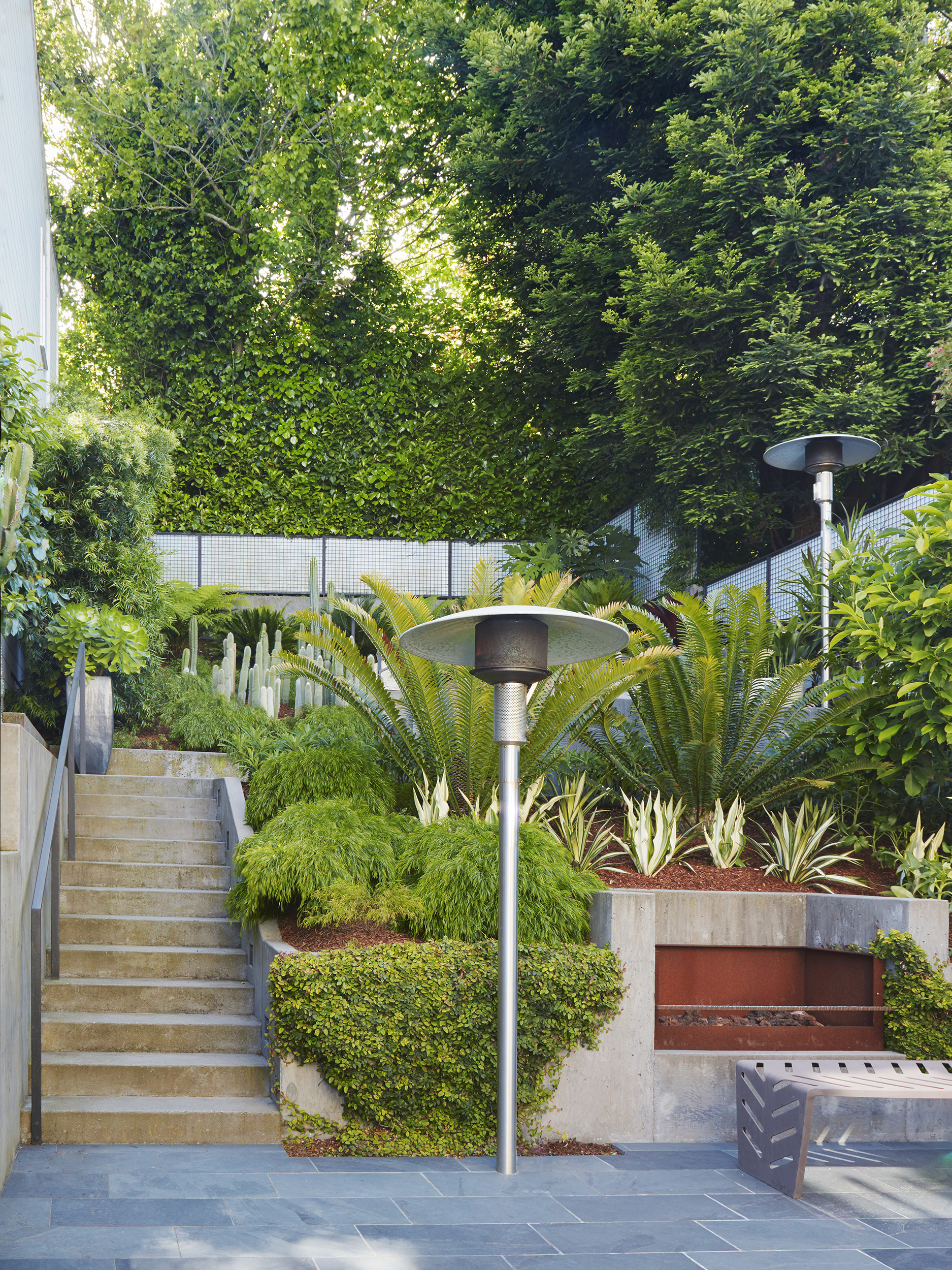 Daniel Nolan Design —Buena Vista