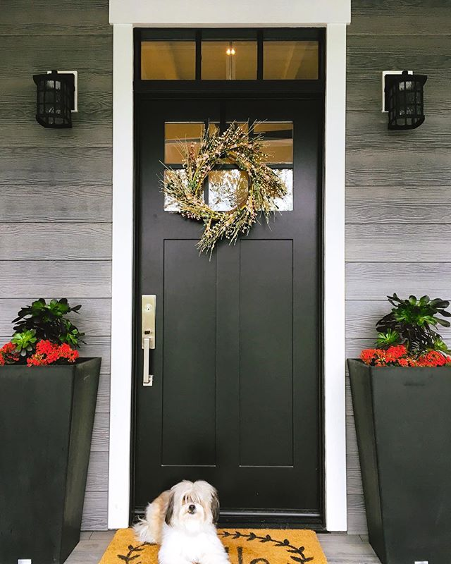 On location today with Max: part-time office dog, full-time good boy.  #exteriordesign #exteriorinspo #housebeautifulhome #mybhghome #instahomes #bhghome #frontporch #frontdoor  #dogsofinsta #rescuedog #shihtzu #lhasaapso #mixedbreed #adoptdontshop