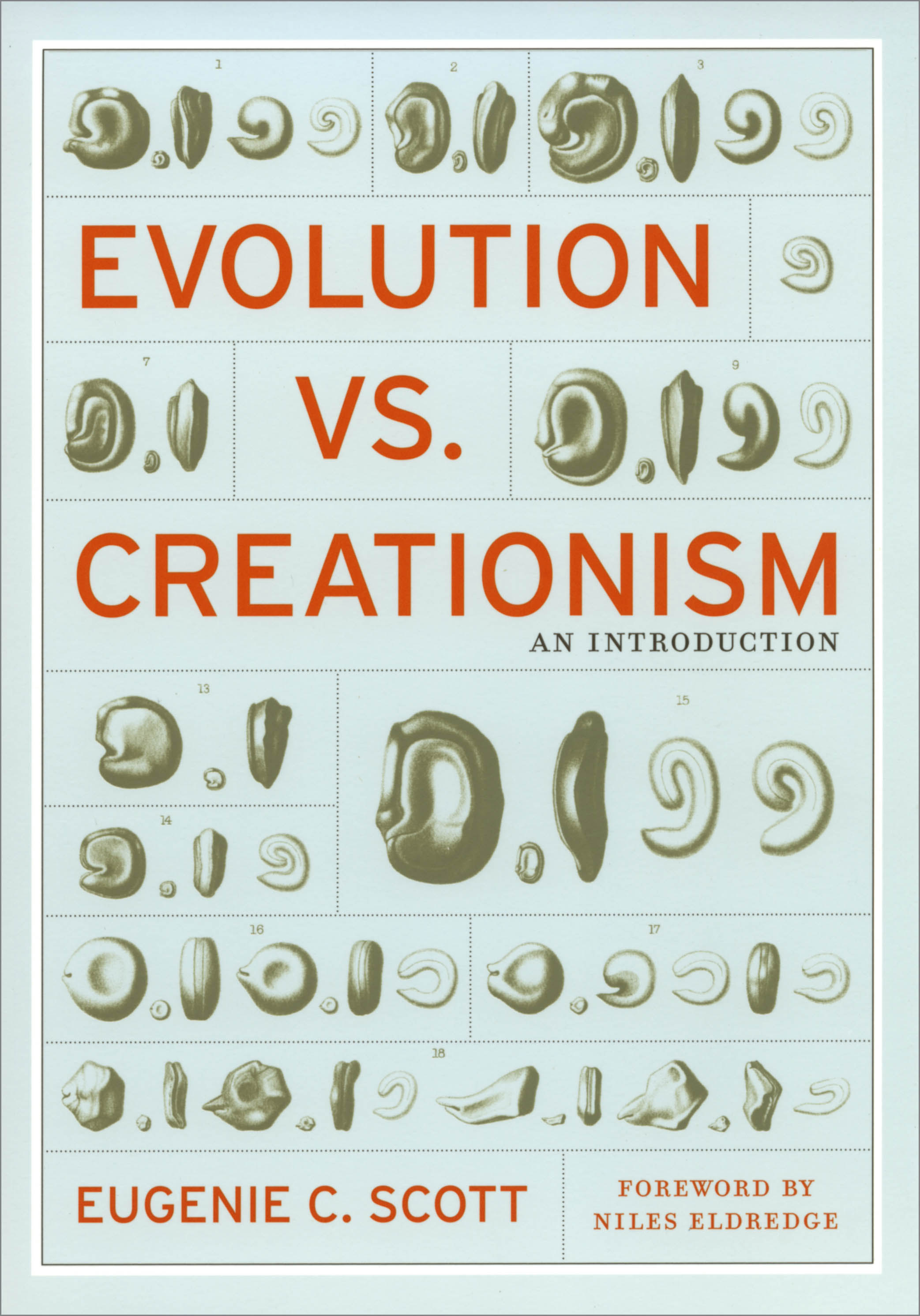evolution-vs-creationism.jpg