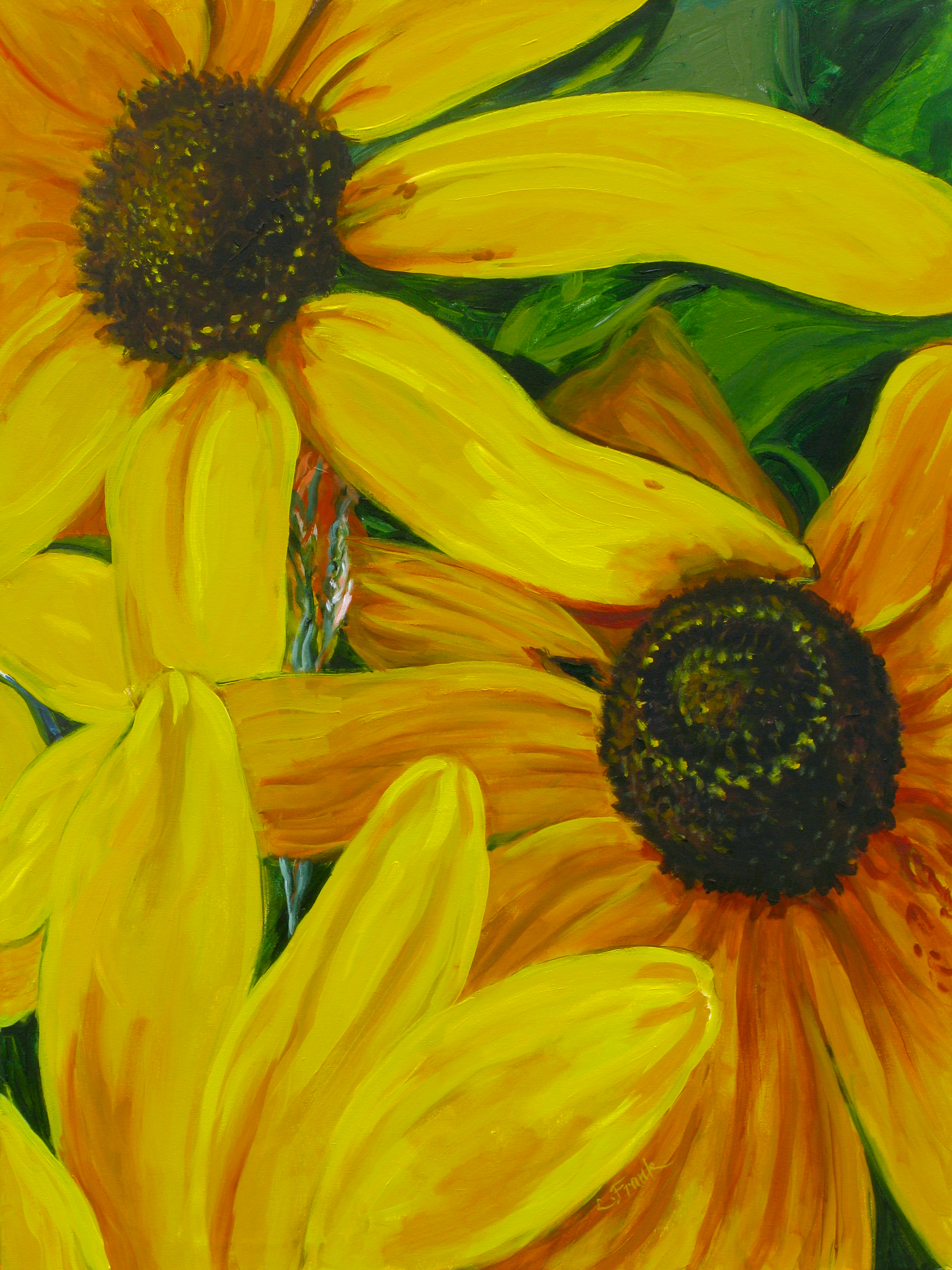 Black-Eyed Susan's, Outer Island