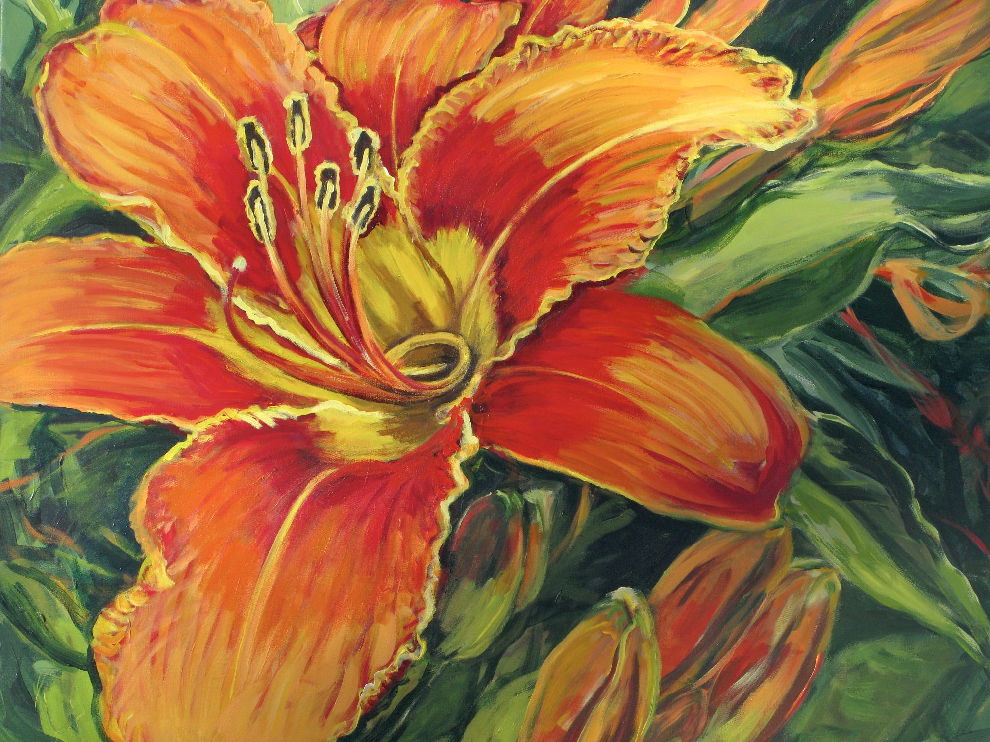Day Lily, Outer Island