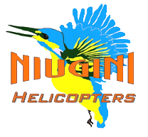 NiuginiHelicoptersLogo reduced noise (no background).png