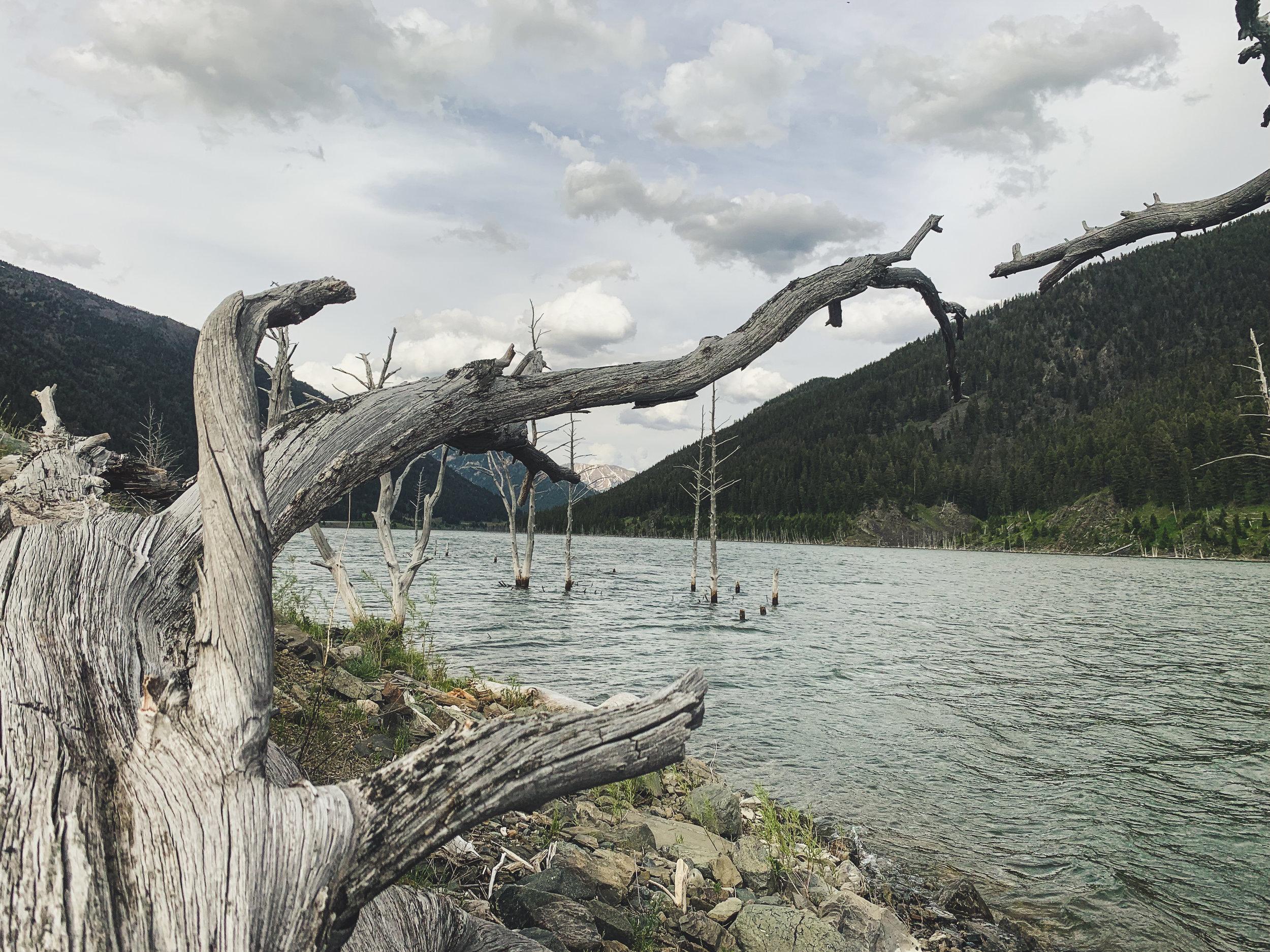 Quake Lake.jpg