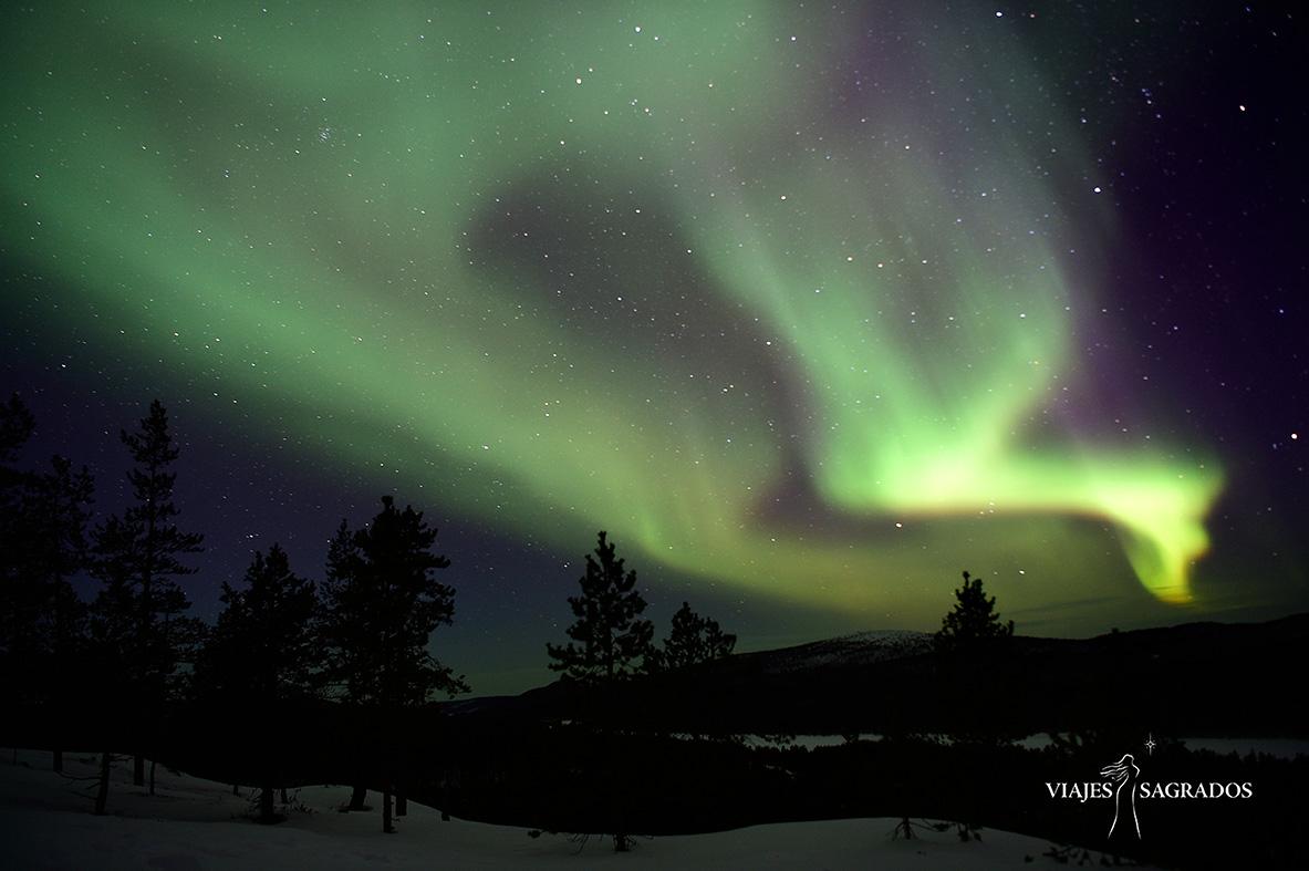 Viaja a ver auroras boreales