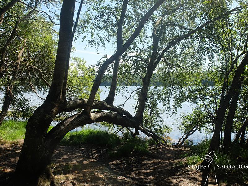 Lago Paimpont -