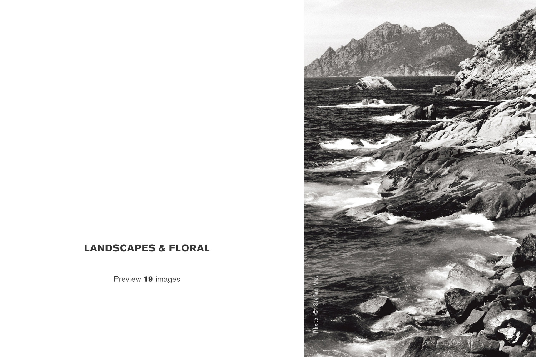 00-Landscapes&Floral_COR_00029_S-WM-light.jpg