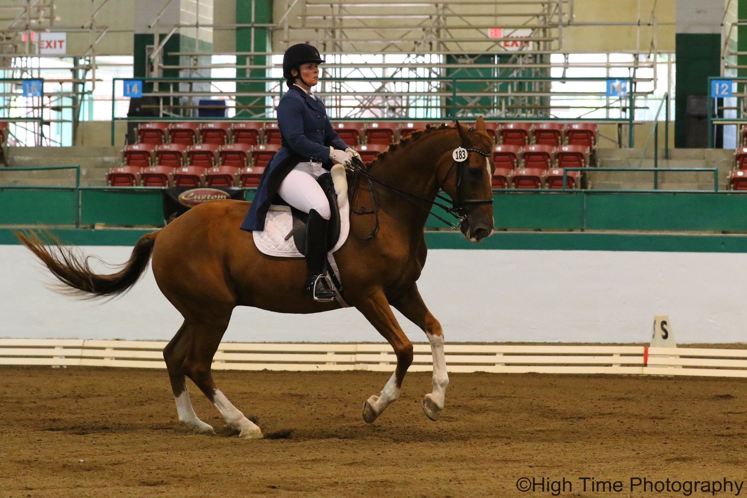 Othello, who taught me how to train to the FEI level.