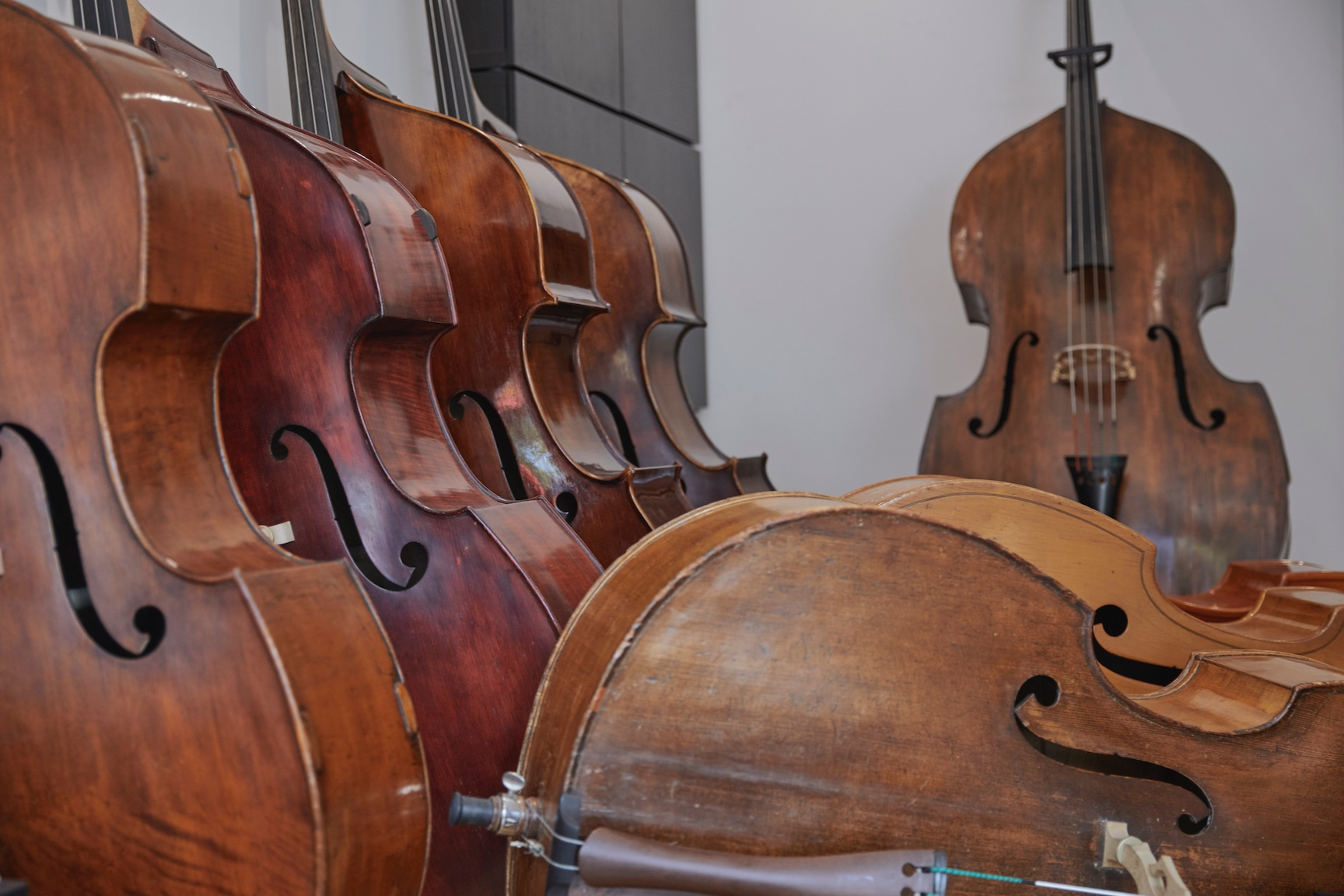 Double Basses - Learn More