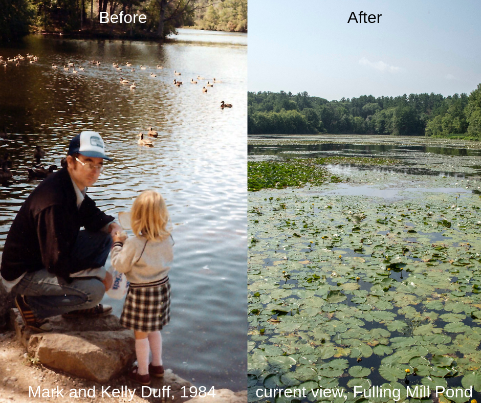 Fulling Mill Pond - Before and After.png