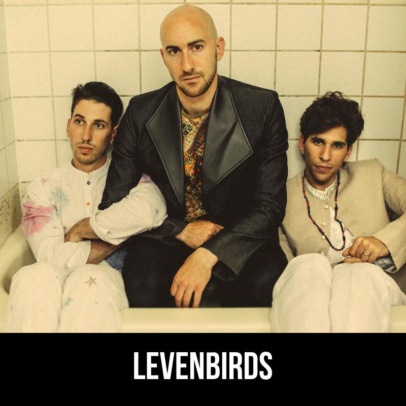 Levenbirds.png