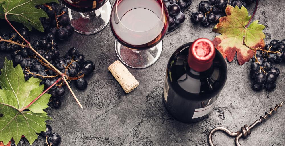 Wine School Header_SC Website.png