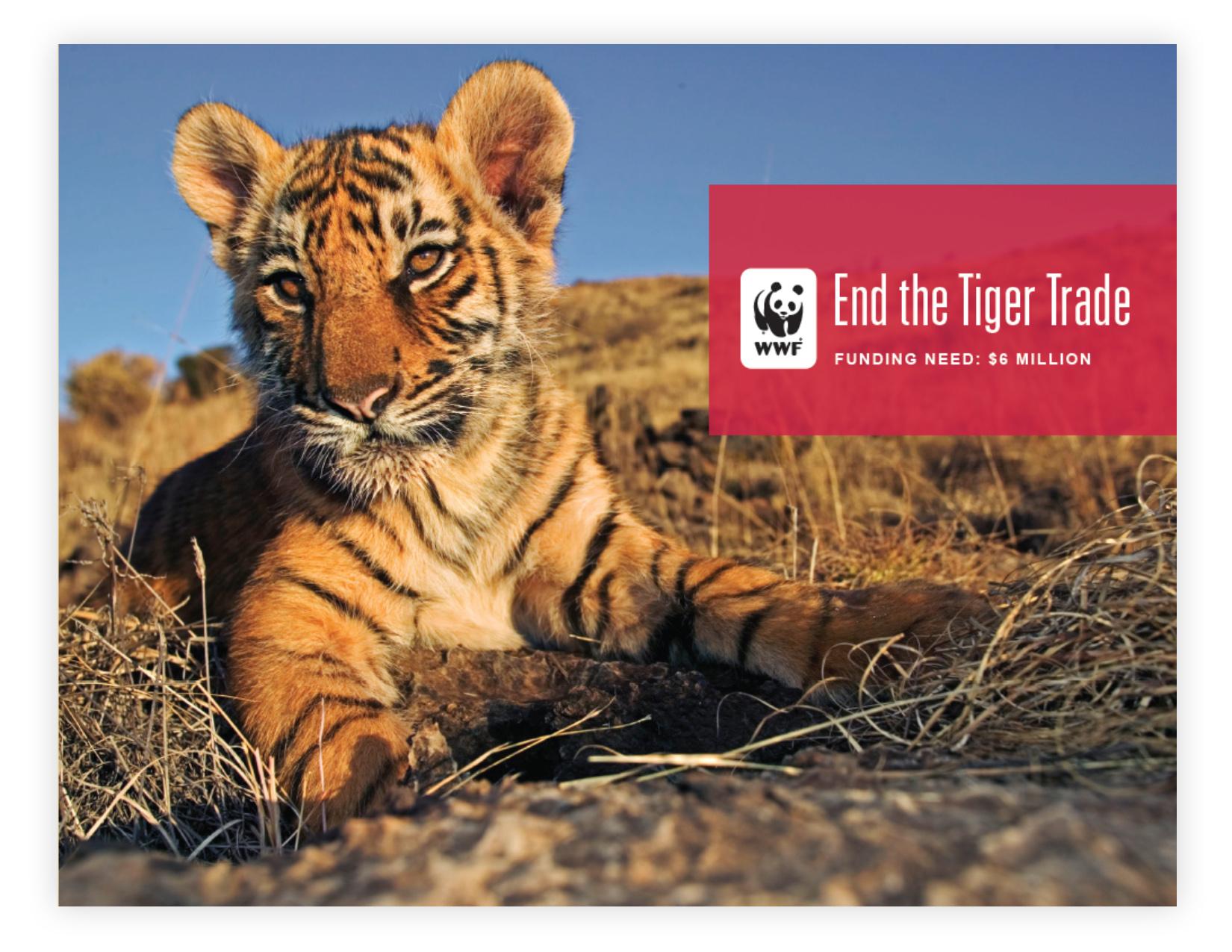 WWF_Page_4.jpg