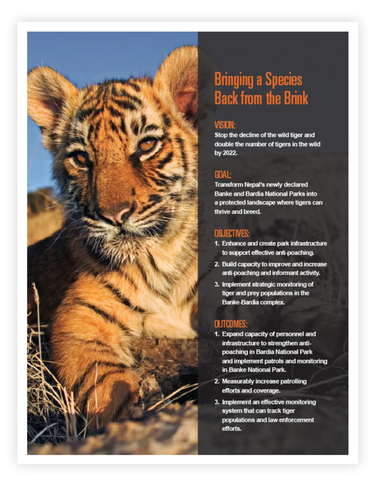 WWF_Stewardship_4.jpg
