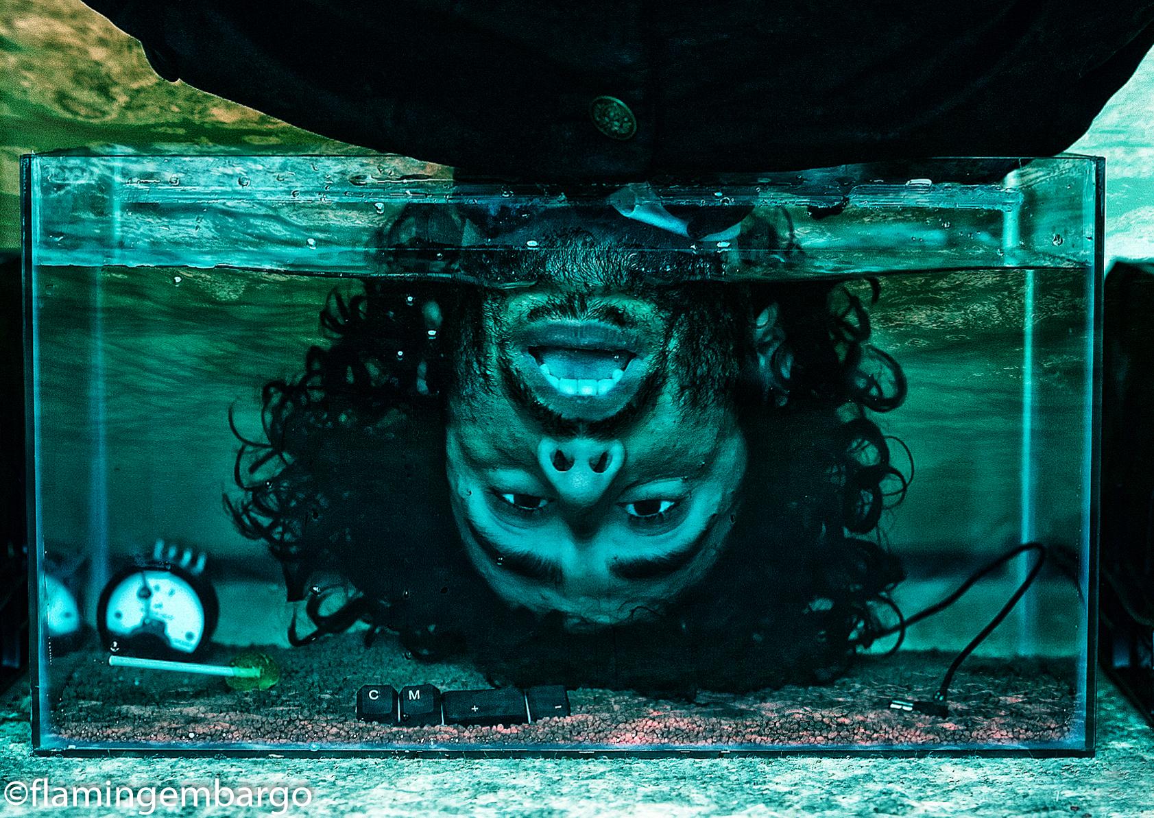 fishtankUncroppedSig.jpg