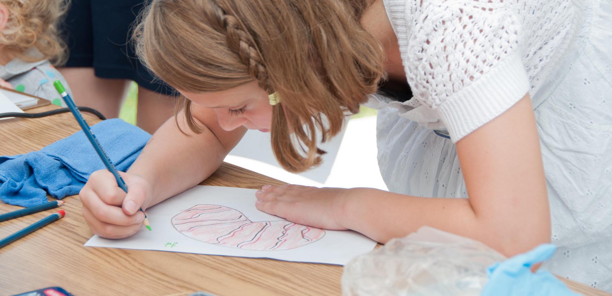 A-desenhar-um-rim-e1425844323378.jpg