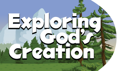 Conservation of God's Creation (3rd Grade thru 6th Grade)  Fee: $75  Sunday, July 14th 3:00 p.m. – Tuesday, July 16th after Evening Worship  Directed By: Kelly Jacimore, Elizabeth Thames, and Mardell McClurkin    Mail Registration To:  Shoal Creek Camp  P.O. Box 33, Alma, AR 72921  (479) 461-5209    *Deadline to Register is July 6th  Families are invited for dinner and worship at 6:00 p.m. on Tuesday, July 16th.